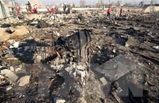 Đã tìm thấy 2 chiếc hộp đen của máy bay dân dụng Ukraine rơi tại Iran