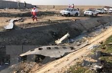 Ukraine tiết lộ thêm thông tin về vụ máy bay Boeing rơi ở Iran