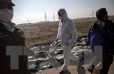 IRGC: Người điều khiển tên lửa Iran bắn máy bay đã hoạt động đơn độc