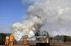 Khói do cháy rừng tại Australia phát tán khắp nơi trên thế giới