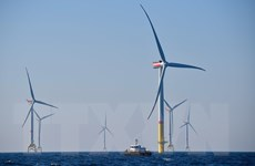 Các công ty dầu khí dành chưa đến 1% đầu tư vào năng lượng xanh