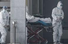 Trung Quốc ưu tiên khống chế virus gây bệnh viêm phổi lạ