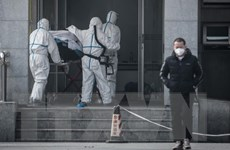 Dịch viêm phổi do virus corona: Vũ Hán triển khai biện pháp ngăn chặn