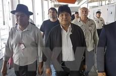 Quốc hội Bolivia chấp thuận đơn xin từ chức của ông Evo Morales