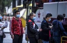 Thụy Sĩ sẵn sàng hỗ trợ nỗ lực quốc tế ngăn chặn đại dịch viêm phổi