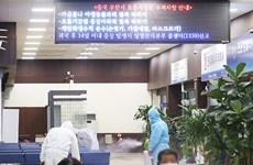 Doanh nghiệp Hàn lập nhóm rà soát sức khỏe nhân viên tại Trung Quốc