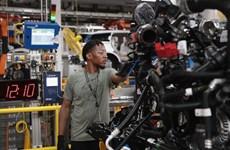 NABE: Kinh tế Mỹ dự kiến tăng trưởng khả quan hơn trong năm 2020
