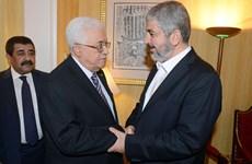 Các phe phái Palestine phản đối kế hoạch hòa bình Trung Đông của Mỹ