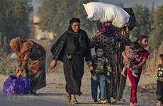 Thổ Nhĩ Kỳ có thể lại mở chiến dịch quân sự tại tỉnh Idlib của Syria
