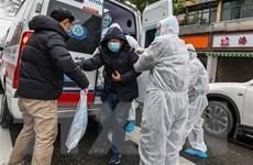 Pháp: Một công dân vừa được sơ tán về nước bị nhiễm nCoV