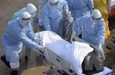 Iran bắt giữ đối tượng phát tán video giả về dịch bệnh nCoV