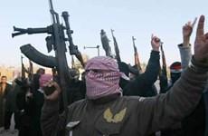 Lãnh đạo chủ chốt của nhánh Taliban tại Pakistan bị diệt ở Afghanistan