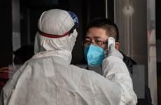 Dịch nCoV: Số ca tử vong tại Trung Quốc tăng lên 803 người