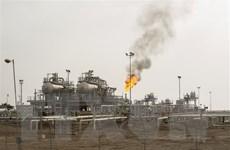 OPEC hạ mức dự báo tăng trưởng nhu cầu dầu mỏ thế giới
