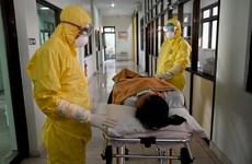 Dịch COVID-19: Indonesia có trường hợp đầu tiên nghi nhiễm virus