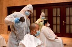 Dịch COVID-19: Khi những người thợ cắt tóc cũng vào cuộc