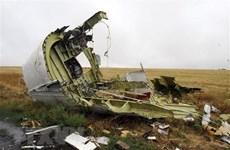 Điện Kremlin: Nga không dính líu tới vụ rơi máy bay MH17