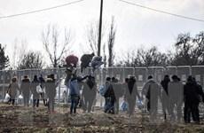 Thổ Nhĩ Kỳ tố cáo Hy Lạp bắn đạn thật vào người di cư tại biên giới