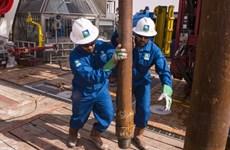 Giá dầu châu Á giảm khoảng 20% khi bước vào tuần giao dịch mới