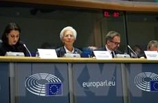 Giới phân tích: ECB có thể phải hành động để đối phó với dịch COVID-19