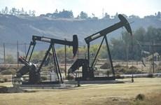 Australia sẽ được quyền tiếp cận kho dự trữ xăng dầu khổng lồ của Mỹ