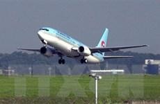 Các hãng hàng không Hàn Quốc gặp khó trước các lệnh cấm nhập cảnh