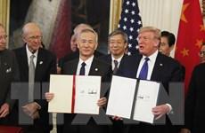 COVID-19 buộc Mỹ-Trung điều chỉnh việc thực thi thỏa thuận thương mại?