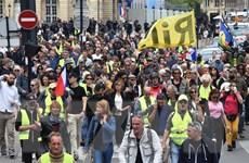 Pháp: Bất chấp dịch COVID-19, người biểu tình áo vàng vẫn xuống đường