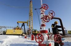 Cần làm gì để chấm dứt cuộc chiến dầu mỏ giữa Saudi Arabia-Nga-Mỹ?