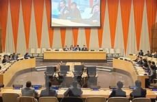 Chuyên gia đánh giá cao sự phối hợp Việt Nam-Nga tại Liên hợp quốc