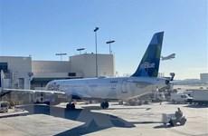 CAPA: COVID-19 sẽ làm hầu hết hãng hàng không phá sản vào cuối 2020