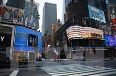 Bầu cử Mỹ 2020: Bang New York hoãn bầu cử sơ bộ do đại dịch COVID-19