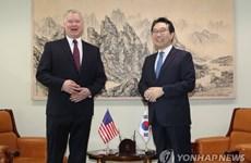 Trưởng đoàn đàm phán hạt nhân Mỹ-Hàn thảo luận về vấn đề Triều Tiên