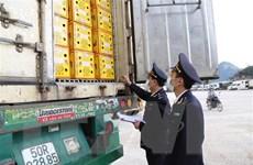 Lạng Sơn thực hiện nhiều giải pháp giảm ùn ứ hàng hóa tại cửa khẩu