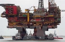 Giá dầu trên thị trường thế giới tăng mạnh nhất trong hai tuần