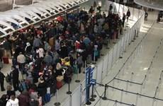 Mỹ đang cân nhắc cấm du khách nước ngoài từ Nhật Bản nhập cảnh