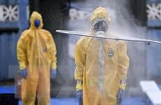 Malvinas có ca nhiễm đầu tiên, số tử vong tại Brazil, Thổ Nhĩ Kỳ tăng