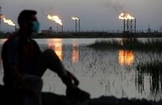 Nhiều quả rocket rơi gần công ty dầu mỏ của Mỹ ở miền Nam Iraq