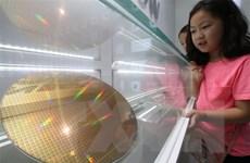 Hàn Quốc biến rủi ro thành cơ hội trong ngành công nghiệp chiến lược