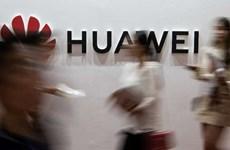 Trung Quốc vượt Mỹ đứng đầu thế giới về số đơn đăng ký bằng sáng chế
