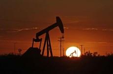 WSJ: Nhiều công ty dầu khí của Mỹ bắt đầu ngừng hoạt động