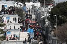 Hy Lạp: Hỏa hoạn thiêu rụi một phần trại tị nạn lớn nhất đảo Chios