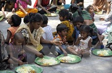 LHQ: Tình trạng mất an ninh lương thực gia tăng từ trước dịch COVID-19