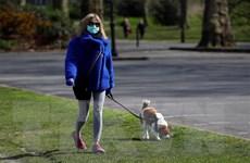 Chuyên gia cảnh báo nguy cơ các đại dịch xuất phát từ động vật