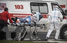 Nga, Ukraine và Belarus ghi nhận thêm nhiều ca nhiễm mới