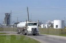 Giá dầu tại châu Á đi lên sau khi Mỹ công bố báo cáo dự trữ