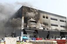 Hàn Quốc: Số người chết trong vụ hỏa hoạn tại công trường tăng mạnh