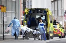 Dịch bệnh đến 17h ngày 5/5: Số ca tử vong tại Anh cao nhất châu Âu