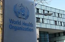 Số vụ tấn công mạng nhằm vào WHO tăng đột biến trong đại dịch COVID-19