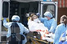 Mỹ: Số ca tử vong thấp, tướng quân đội lúc dương tính lúc âm tính